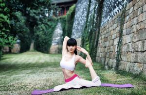 A jóga gyakorlatai