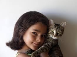 A macskaszőr allergia kezelése több módon is lehetséges