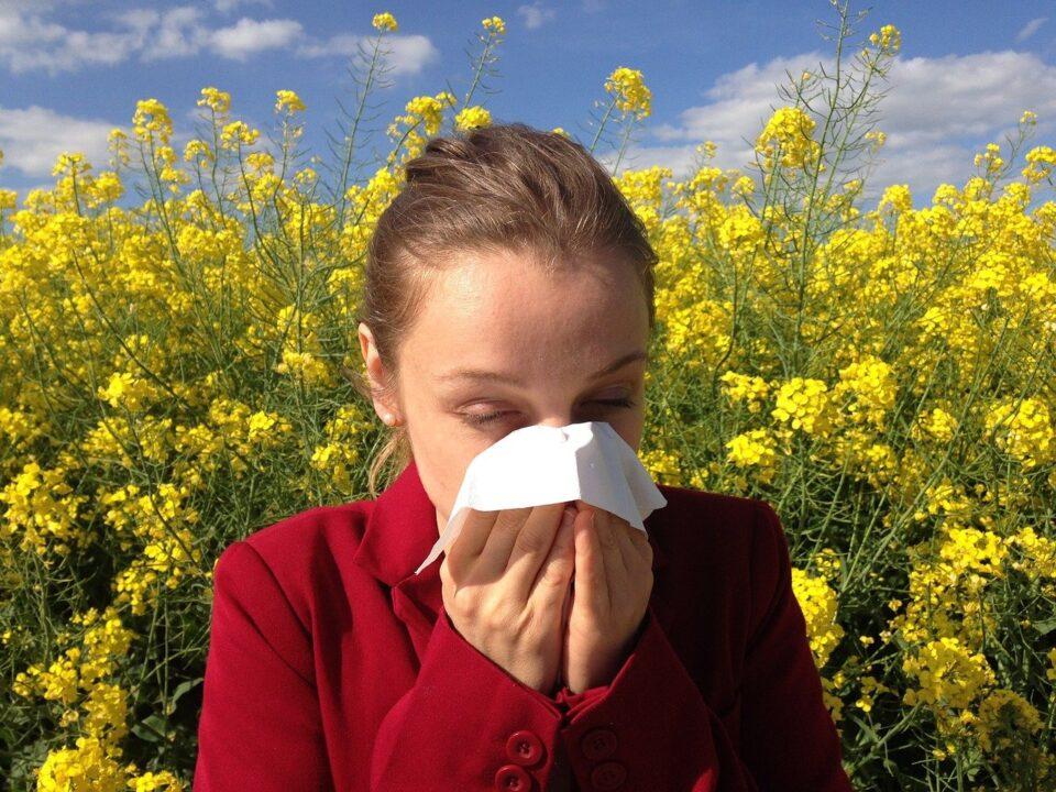Mit kell tudni a pollen allergiáról és annak kezelési lehetőségeiről?